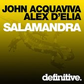 Play & Download Salamandra by John Acquaviva | Napster