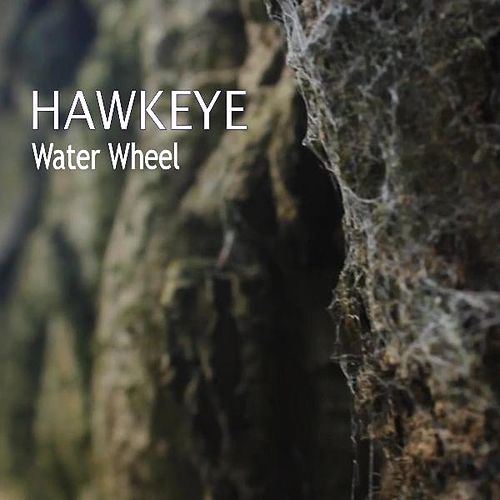 Water Wheel by Hawkeye