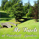 Mr. Bach at Vauxhall Gardens by Various Artists