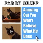 Play & Download Amazing Cat You Won't Believe What He Does by Parry Gripp | Napster