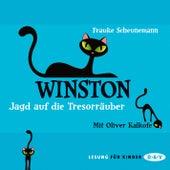 Winston, Teil 3: Jagd auf die Tresorräuber von Frauke Scheunemann