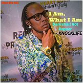 I Am, What I Am (Dancehall Hot Rapper) by Various Artists