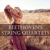 Play & Download Beethoven's String Quartets by Amadeus Quartet | Napster