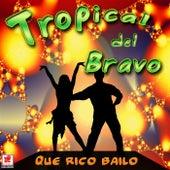 Que Rico Bailo by Tropical Del Bravo
