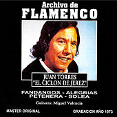 Play & Download Archivo De Flamenco Vol.15 (Juan Torres) by Juan Torres | Napster