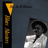 Play & Download Blues Masters Vol. 2 by Big Joe Williams | Napster