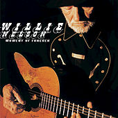 Play & Download Moment Of Forever by Willie Nelson | Napster