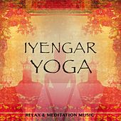 Play & Download Iyengar Yoga, Vol. 1 (Relax & Meditation Music) by Various Artists | Napster