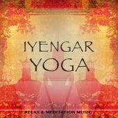 Iyengar Yoga, Vol. 1 (Relax & Meditation Music) by Various Artists