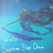 Supreme Blue Dream by Winter