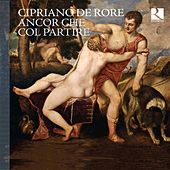 Play & Download Cipriano de Rore: Ancor che col partire by Various Artists | Napster