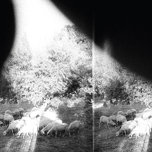 Asunder, Sweet and Other Distress by Godspeed You! Black Emperor