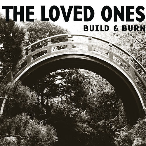 Build & Burn by The Loved Ones (Punk)