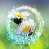 Guten Morgen Frühling! – Klassische Musik für das Wohlbefinden, Spaziergang im Park, Positives Denken, Picknick mit Wahre Freunde, Stressabbau, Hintergrundmusik für Alles by Gute Frühling Vertont