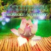 Play & Download Músicoterapia – Meditación & Reflexión, Música Clásica Relajante, Descanso, Música de Arpa para Yoga, Liberar el Cuerpo y el Alma, Suena en el Fondo, Calma y Tranquilidad by Expertos en Música Calmantes | Napster