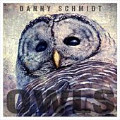 Owls by Danny Schmidt
