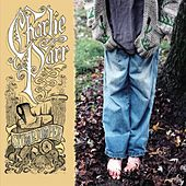 Play & Download Stumpjumper by Charlie Parr | Napster