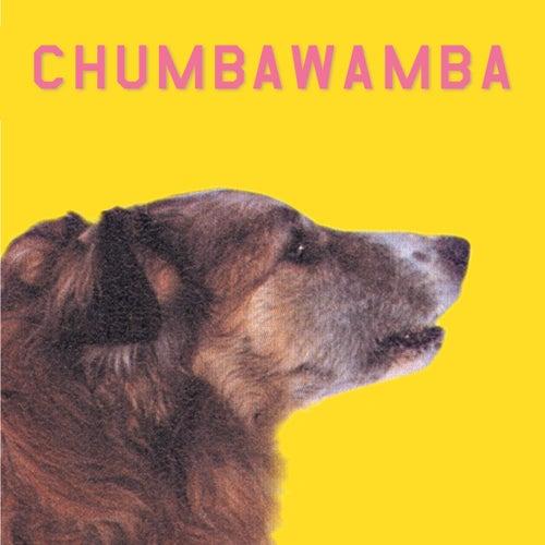 Wysiwyg by Chumbawamba