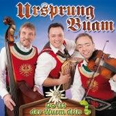 Do is der Wurm drin by Ursprung Buam