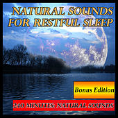 Play & Download Natural Sounds for Restful Sleep: 240 Minutes Bonus Edition by Natural Sounds | Napster