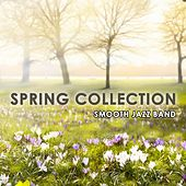 Spring Collection von Various Artists