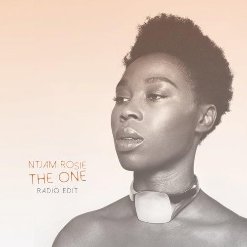 Play & Download The One (Radio Edit) by Ntjamrosie   Napster