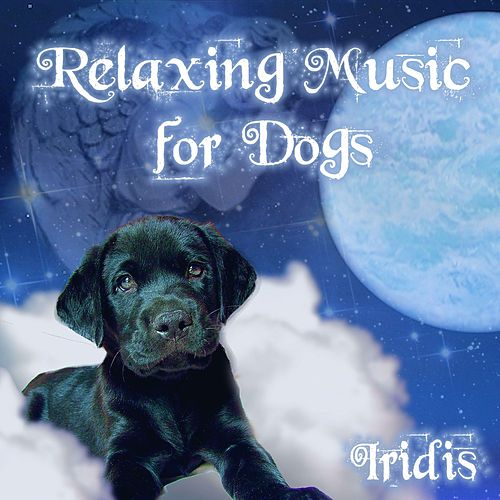 Relaxing Music for Dogs by Iridis