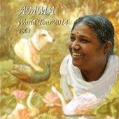 World Tour 2014, Vol. 4 by Amma