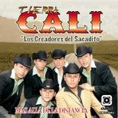 Play & Download Más Allá de la Distancia (Los Creadores del Sacadito) by Tierra Cali | Napster