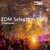 Play & Download EDM Selection, Vol. 2 - EP by Various Artists | Napster