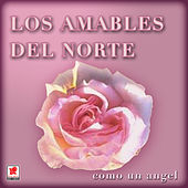 Play & Download Como Un Angel by Los Amables Del Norte | Napster