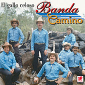 El Gallo Celoso by Banda Camino