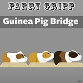 Play & Download Guinea Pig Bridge by Parry Gripp | Napster