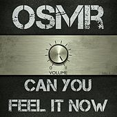 Play & Download Can You Feel It Now by Old Southern Moonshine Revival | Napster