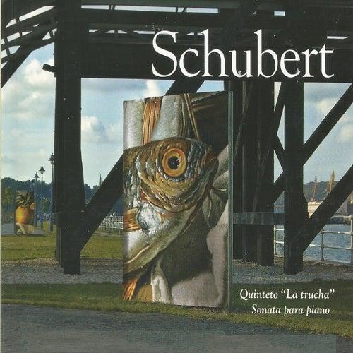 Schubert - Sonata para Piano by Elisabeth Leonskaja