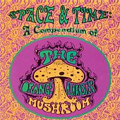 Play & Download Space and Time: A Compendium of the Orange Alabaster Mushroom by The Orange Alabaster Mushroom | Napster