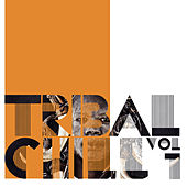 Tribal Chill, Vol. 1 by Various Artists