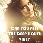 Play & Download Can You Feel the Deep House Vibe? by Various Artists | Napster