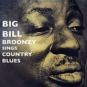 Big Bill Broonzy Sings Country Blues by Big Bill Broonzy