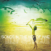 Songs in the Key of Awe by Billy Sprague