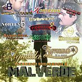 Play & Download Corridos Dedicados a Malverde by Various Artists | Napster
