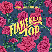 Flamenco Top by Various Artists