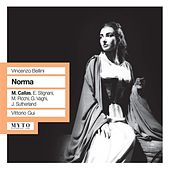 Play & Download Bellini: Norma by Mirto Picchi | Napster