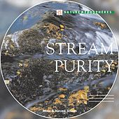 Play & Download Nature Atmosphere: Stream Purity by Laurent Dury | Napster