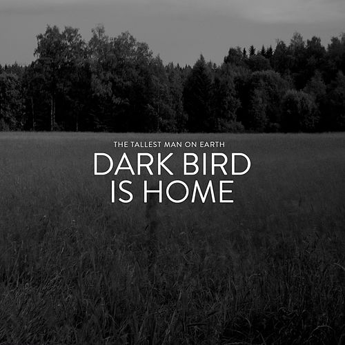 Play & Download Dark Bird Is Home by The Tallest Man On Earth | Napster