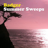 Summer Sweeps by Badger