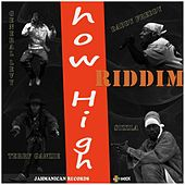 Play & Download How High Riddim by Various Artists   Napster