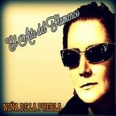 Niña de la Puebla - El Arte del Flamenco by La Niña de la Puebla