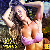 South Beach Nights by Various Artists