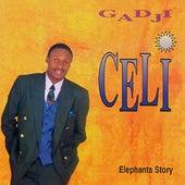 Elephants Story by Gadji Celi